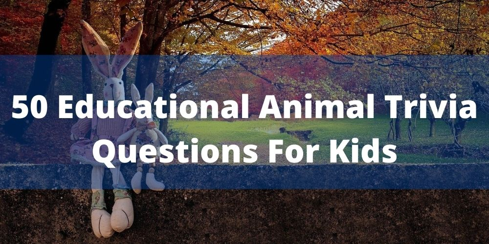 Animal Trivia Questions For Kids